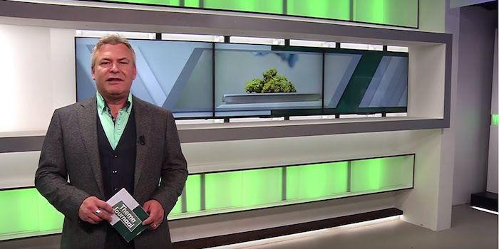 Themajournaal medicinale cannabis juli 2017