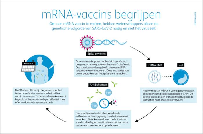 mRNA-vaccin begrijpen