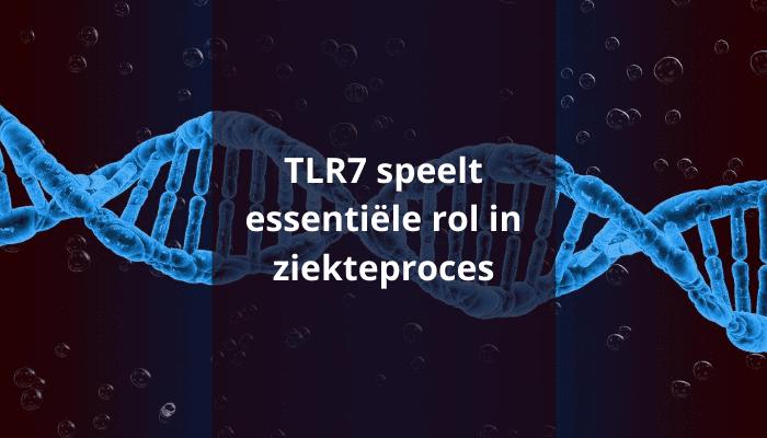 Toll-like receptor-7-speelt-essentiële-rol-in-ziekteproces